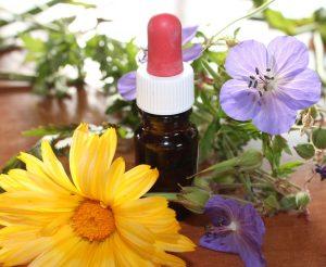 natural medicine, flower essences, natural